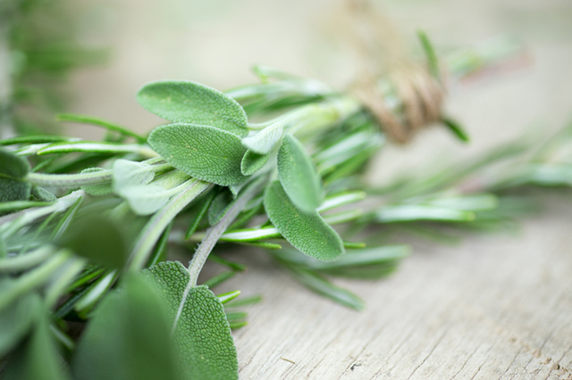 Sage health benefits for menopause.jpg