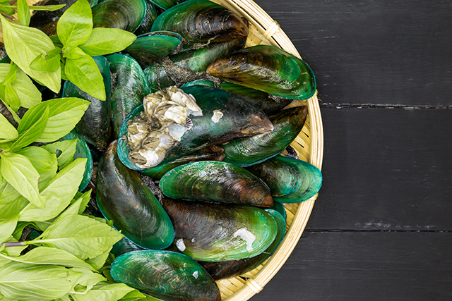 Green lipped mussel extract.jpg