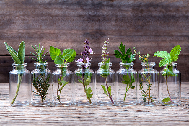 Herbs to help you re-charge and support your vitality.jpg