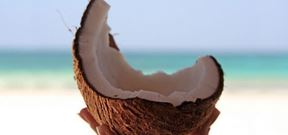 Top 10 Benefits of Coconut Oil