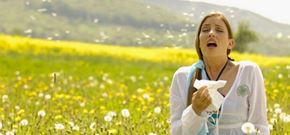 Allergies - Don't Overreact!