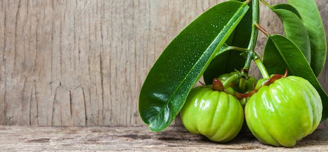 Weight Loss and Garcinia Cambogia -  Does it Work?