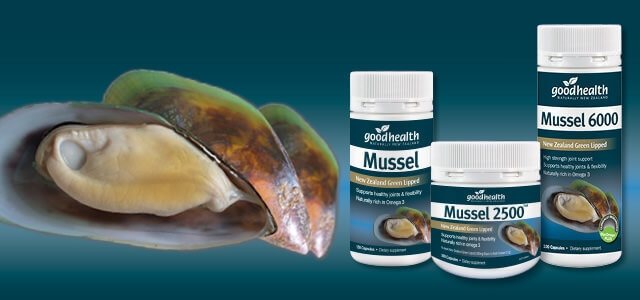 My Mussel 6000 Experience